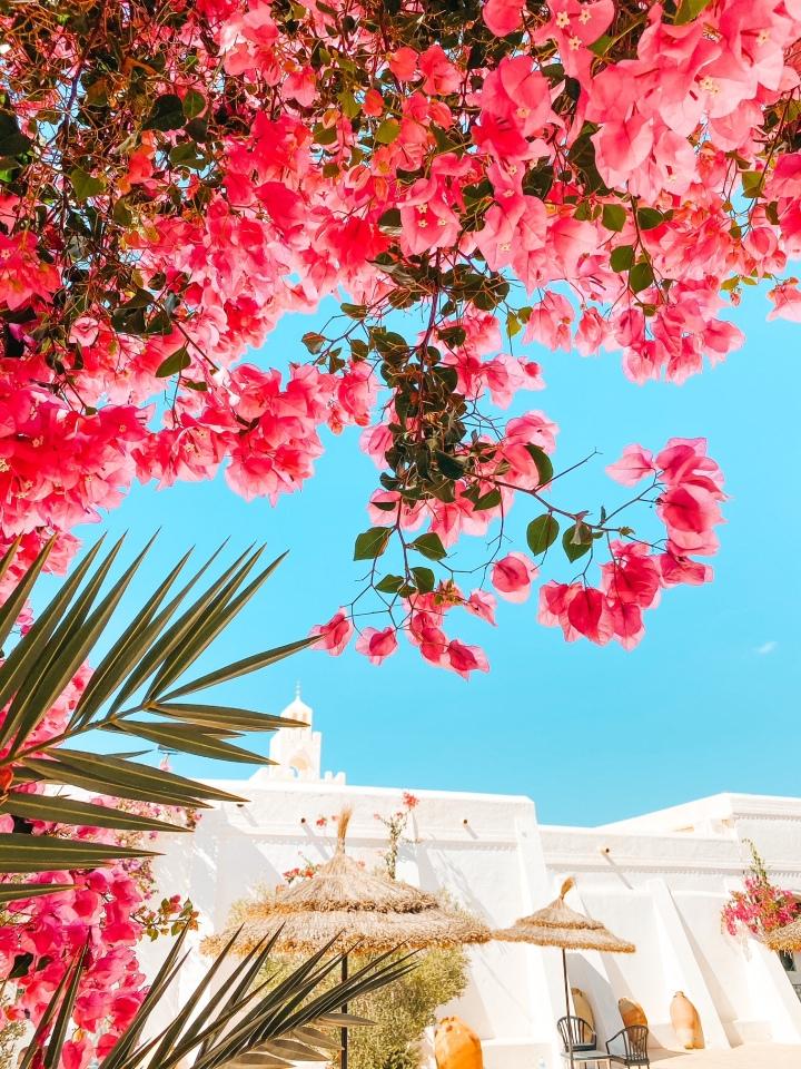 La Tunisie une destination farniente ? Stop auxappriories